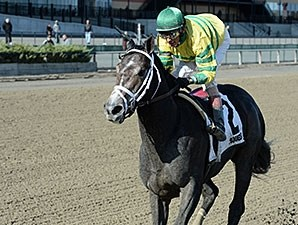 Blofeld wins the 2014 Nashua Stakes.