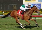 Dynamic Holiday in the Herecomesthebride Stakes.