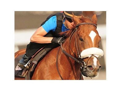 Pender Harbour is looking for his third straight victory in the King Edward.