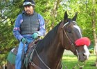 Hangin' With Haskin: Lava Man Revisited