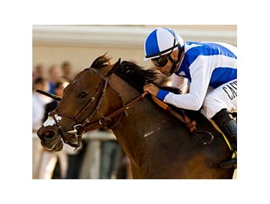 "Multiple stakes winner J P's Gusto faces 9 in the Red Legend Stakes.<br><a target=""blank"" href=""http://www.bloodhorse.com/horse-racing/photo-store?ref=http%3A%2F%2Fpictopia.com%2Fperl%2Fgal%3Fprovider_id%3D368%26ptp_photo_id%3D9176184%26ref%3Dstory"">Order This Photo</a>"