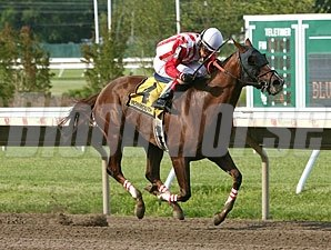 My Place Anytime wins the 2013 Blue Sparkler Stakes.