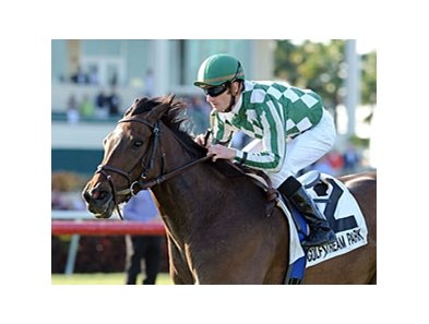 Centre Court tries to return to the Winner's Circle in the Ballston Spa Stakes.