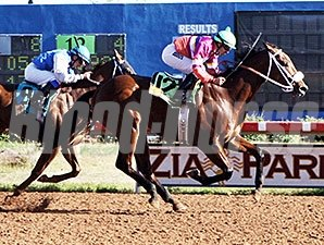 Chicas Minise wins the New Mexico Classic Cup Championship for Colts & Geldings.