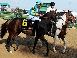 Bodemeister in the post parade for Kentucky Derby 138.