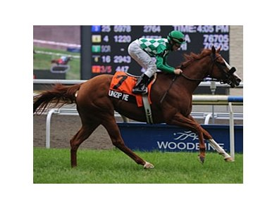 Unzip Me made easy work of the field in the Royal North Stakes at Woodbine.