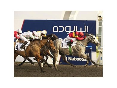 Captain Obvious won a six-furlong allowance race in his Meydan debut Jan 20.