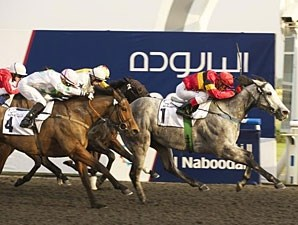 Captain Obvious, Meydan Allowance, January 20, 2012.