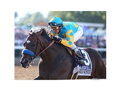 Paynter wins the Haskell.