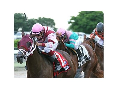 Bim Bam shares top weight with Dean's Kitten in the Palm Beach Stakes.