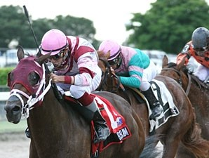 Bim Bam wins the 2009 Foolish Pleasure.