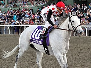 Za Approval in the 2013 Breeders' Cup Mile.