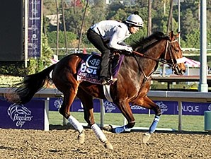 Colonel Joan - Breeders Cup - October 31, 2013