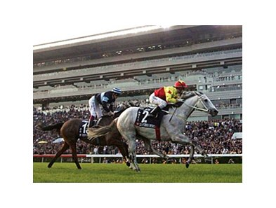 California Memories repeats in the Hong Kong Cup.