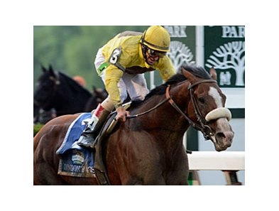 "Union Rags<br><a target=""blank"" href=""http://photos.bloodhorse.com/TripleCrown/2012-Triple-Crown/Belmont-Stakes-144/23333063_3WZKbw#!i=1895935373&k=qtpJHHj"">Order This Photo</a>"