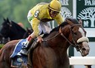 Union Rags Sidelined by Suspensory Lesion