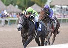 "Bluegrass Singer leads them home in the Mucho Macho Man Stakes.<br><a target=""blank"" href=""http://photos.bloodhorse.com/AtTheRaces-1/At-the-Races-2015/i-4HHZj2x"">Order This Photo</a>"