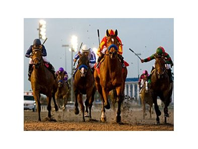 "Lookin At Lucky <br><a target=""blank"" href=""http://www.bloodhorse.com/horse-racing/photo-store?ref=http%3A%2F%2Fpictopia.com%2Fperl%2Fgal%3Fprovider_id%3D368%26ptp_photo_id%3D8709548%26ref%3Dstory"">Order This Photo</a>"