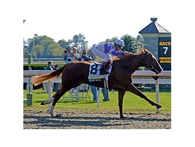 "Square Eddie, shown winning the Lane's End Breeders' Futurity <br><a target=""blank"" href=""http://www.bloodhorse.com/horse-racing/photo-store?ref=http%3A%2F%2Fpictopia.com%2Fperl%2Fgal%3Fprovider_id%3D368%26ptp_photo_id%3D6182741%0D%0A%26ref%3Dstory"">Order This Photo</a>"