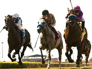 Obviously wins the 2013 Del Mar Mile.
