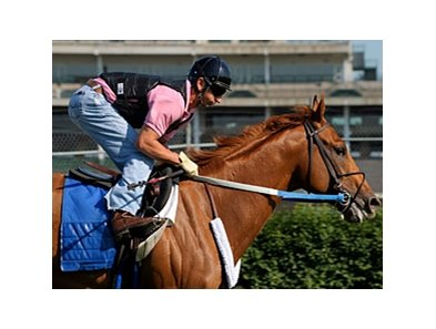"Curlin<br><a target=""blank"" href=""http://www.bloodhorse.com/horse-racing/photo-store?ref=http%3A%2F%2Fpictopia.com%2Fperl%2Fgal%3Fprovider_id%3D368%26ptp_photo_id%3D5093134%26ref%3Dstory"">Order This Photo</a>"