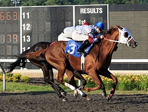 Terriffico wins the 2011 Leematt Stakes.