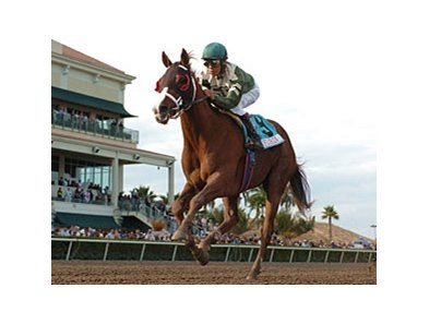 "This Ones for Phil is the lone graded stakes winner in the Withers field.<br><a target=""blank"" href=""http://www.bloodhorse.com/horse-racing/photo-store?ref=http%3A%2F%2Fpictopia.com%2Fperl%2Fgal%3Fprovider_id%3D368%26ptp_photo_id%3D7535422%26ref%3Dstory"">Order This Photo</a>"