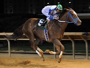 Russell Road wins the 2012 Confucious Say Stakes.