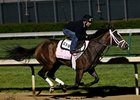 Dreaming of Julia works at Churchill Downs 4/27/2013.