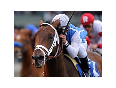 "Exhi and Javier Castellano take the Ben Ali at Keeneland.<br><a target=""blank"" href=""http://www.bloodhorse.com/horse-racing/photo-store?ref=http%3A%2F%2Fpictopia.com%2Fperl%2Fgal%3Fprovider_id%3D368%26ptp_photo_id%3D9500899%26ref%3Dstory"">Order This Photo</a>"