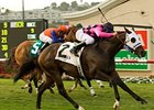 "Storm Mesa winning the San Clemente Handicap.<br><a target=""blank"" href=""http://www.bloodhorse.com/horse-racing/photo-store?ref=http%3A%2F%2Fpictopia.com%2Fperl%2Fgal%3Fprovider_id%3D368%26ptp_photo_id%3D5277160%26ref%3Dstory"">Order This Photo</a>"