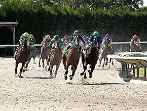 Grand Tito wins the 2014 Miami Mile Handicap.