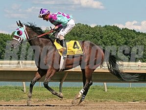 Sloane Ranger wins the 2012 Donald LeVine Memorial Handicap.
