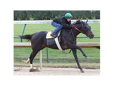 Take Charge Indy clocked a bullet five furlongs in 1:00 3/5 at Churchill Downs Oct. 21.