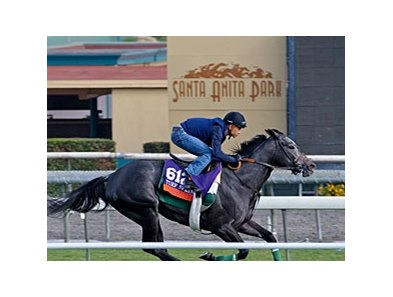 "Mizdirection worked five furlongs in :57 4/5 Oct. 25 at Santa Anita Park. <br><a target=""blank"" href=""http://photos.bloodhorse.com/BreedersCup/2013-Breeders-Cup/Breeders-Cup/32986083_QMHXWK#!i=2858836261&k=C9Tpv8n"">Order This Photo</a>"