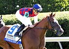 Rainha Da Bateria will carry the highweight of 121 pounds in the Santa Ysabel Stakes.