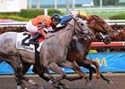 "Gemswick Park (center) and Frolic's Dream (outside) return in the Forward Gal.<br><a target=""blank"" href=""http://www.bloodhorse.com/horse-racing/photo-store?ref=http%3A%2F%2Fpictopia.com%2Fperl%2Fgal%3Fprovider_id%3D368%26ptp_photo_id%3D7311174%26ref%3Dstory"">Order This Photo</a>"