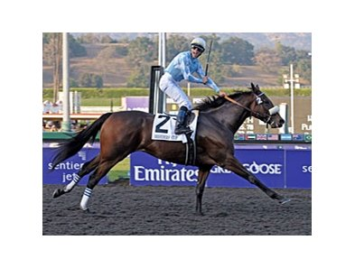 "Sweet Life's daughter Life Is Sweet won the 2009 Breeders' Cup Ladies Classic.<br><a target=""blank"" href=""http://www.bloodhorse.com/horse-racing/photo-store?ref=http%3A%2F%2Fpictopia.com%2Fperl%2Fgal%3Fprovider_id%3D368%26ptp_photo_id%3D8608643%26ref%3Dstory"">Order This Photo</a>"