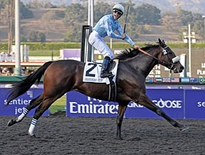Life Is Sweet wins the 2009 Breeders' Cup Ladies Classic.