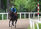 Cozmic One