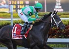 Soldat Sizzles Five Furlongs at Palm Meadows