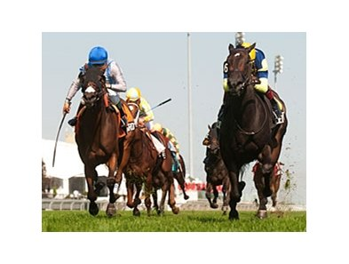 Leigh Court (right) leads them home in the Ontario Colleen Stakes.