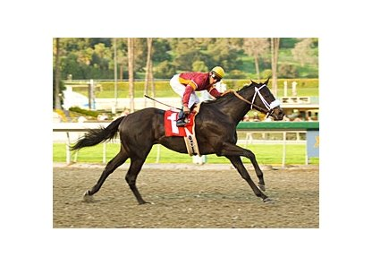 "Georgie Boy and Rafael Bejarano roll in the San Vicente.<br><a target=""blank"" href=""http://www.bloodhorse.com/horse-racing/photo-store?ref=http%3A%2F%2Fpictopia.com%2Fperl%2Fgal%3Fprovider_id%3D368%26ptp_photo_id%3D3542416%26ref%3Dstory"">Order This Photo</a>"