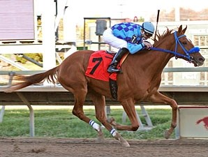 Ucan'tcme wins the 2010 Christopher Elser Memorial Stakes.