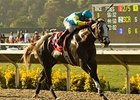 "Favorite Zensational will break from the rail in the Breeders' Cup Sprint.<br><a target=""blank"" href=""http://www.bloodhorse.com/horse-racing/photo-store?ref=http%3A%2F%2Fpictopia.com%2Fperl%2Fgal%3Fprovider_id%3D368%26ptp_photo_id%3D8393796%26ref%3Dstory"">Order This Photo</a>"