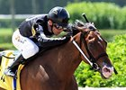 Filly R Free Roll won the June 8 Unbridled Stakes over males.