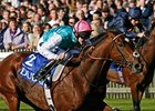 "Frankel charges home to win the Dubai Dewhurst Stakes.<br><a target=""blank"" href=""http://www.bloodhorse.com/horse-racing/photo-store?ref=http%3A%2F%2Fpictopia.com%2Fperl%2Fgal%3Fprovider_id%3D368%26ptp_photo_id%3D9235130%26ref%3Dstory"">Order This Photo</a>"
