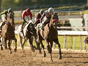 Bond Holder wins the 2013 FrontRunner.