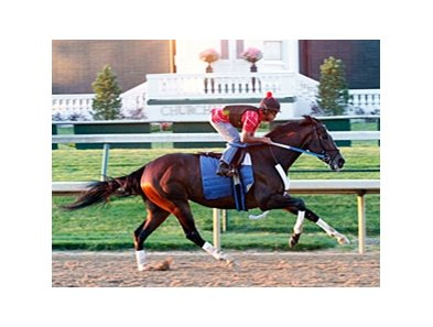 Rachel Alexandra strides out near the Churchill Downs finish line.