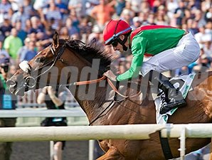 Euro Charline wins the 2014 Beverly D.